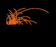 DPWK_Logo